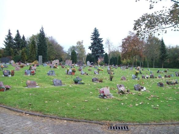 Rasengrabfeld ohne Baum, Blume oder Weg - wer will an einem solchen Grab gedenken (1)